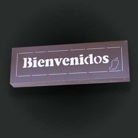 Bienvenidos - Sadies